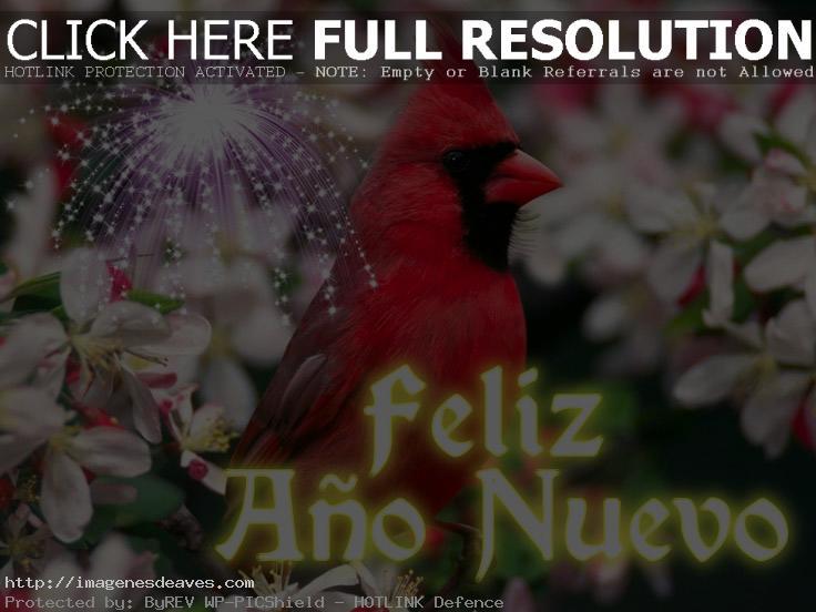Imagenes de aves con mensaje Feliz año nuevo