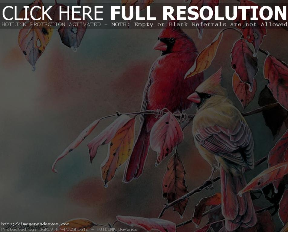 Imagen pinturas al oleo bonitas de aves